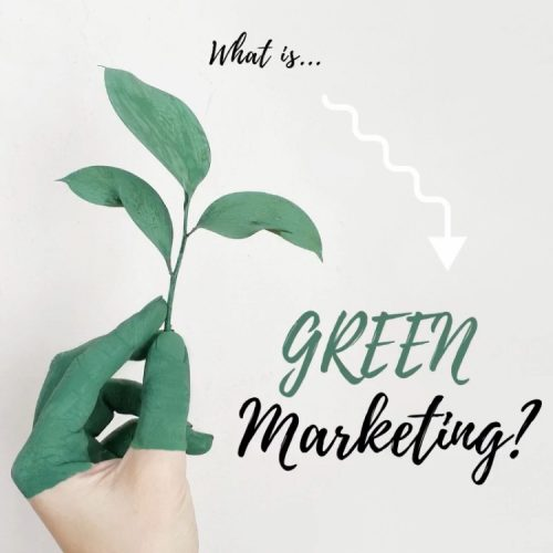 hand holding plant - what is green marketing